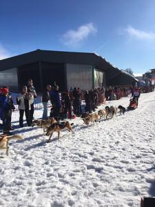 Ski de Fond BOCAGE1